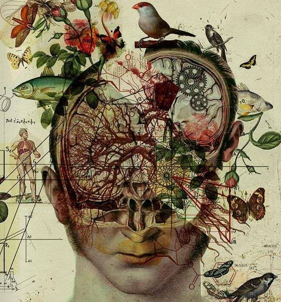 weniger Chaos im Kopf mit Blüten