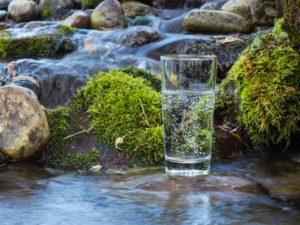 Bergquelle mit Wasserglas