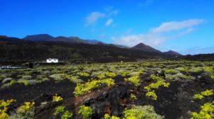 Vulkan-Landschaft